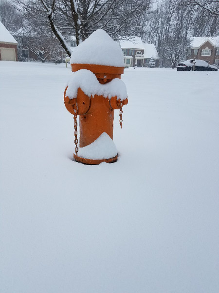 - The fire hydrants in the neighborhood looked festive with their burden of snow.