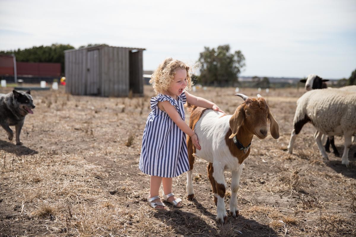 Lauren McAdam Photography Geelong jan juc torquay newtown belmont family newborn photographer-7487.jpg