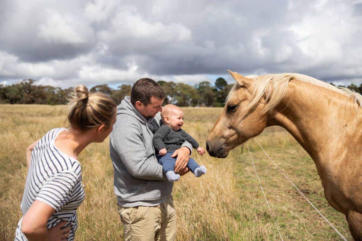 baby and horses Geelong family and newborn lifestyle photography