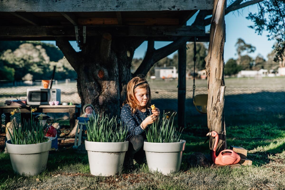 Little girl smelling her daffodils Lauren McAdam Photography Geelong torquay newtown armstrong creek moriac family photographer-5.jpg