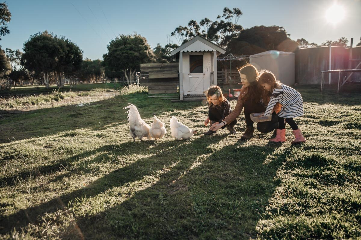 Mum and daughters feeing chickens in the afternoon light Lauren McAdam Photography Geelong torquay newtown armstrong creek moriac family photographer-16.jpg