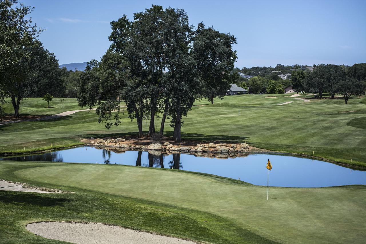 proper golfbackswing -
