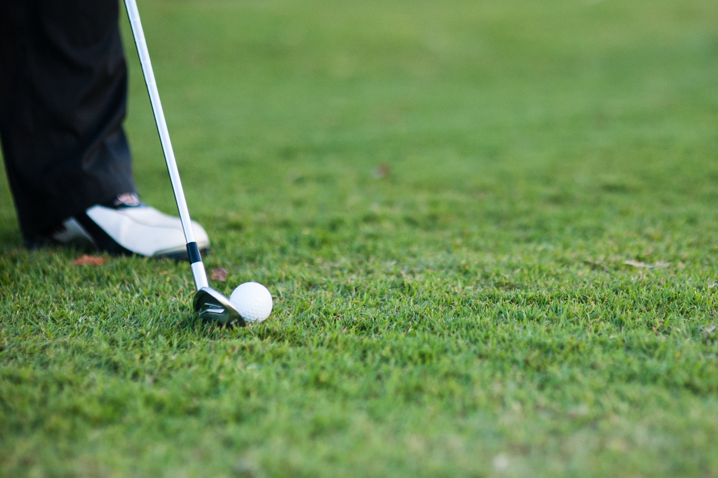 new to golf? -