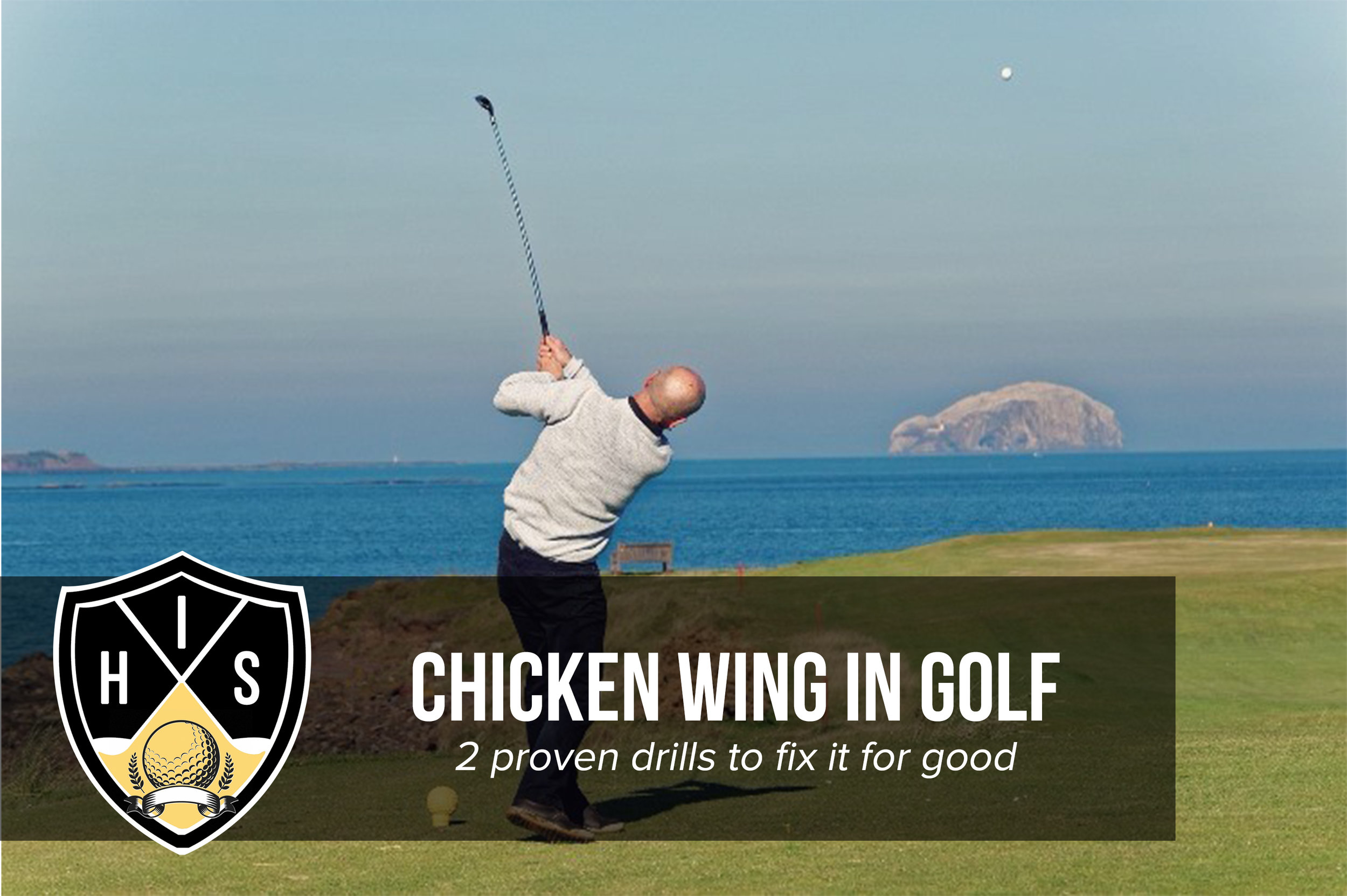 Chicken Wing in Golf