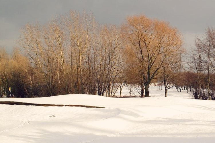 The top 5 winter golf tips to play better golf through the colder months.