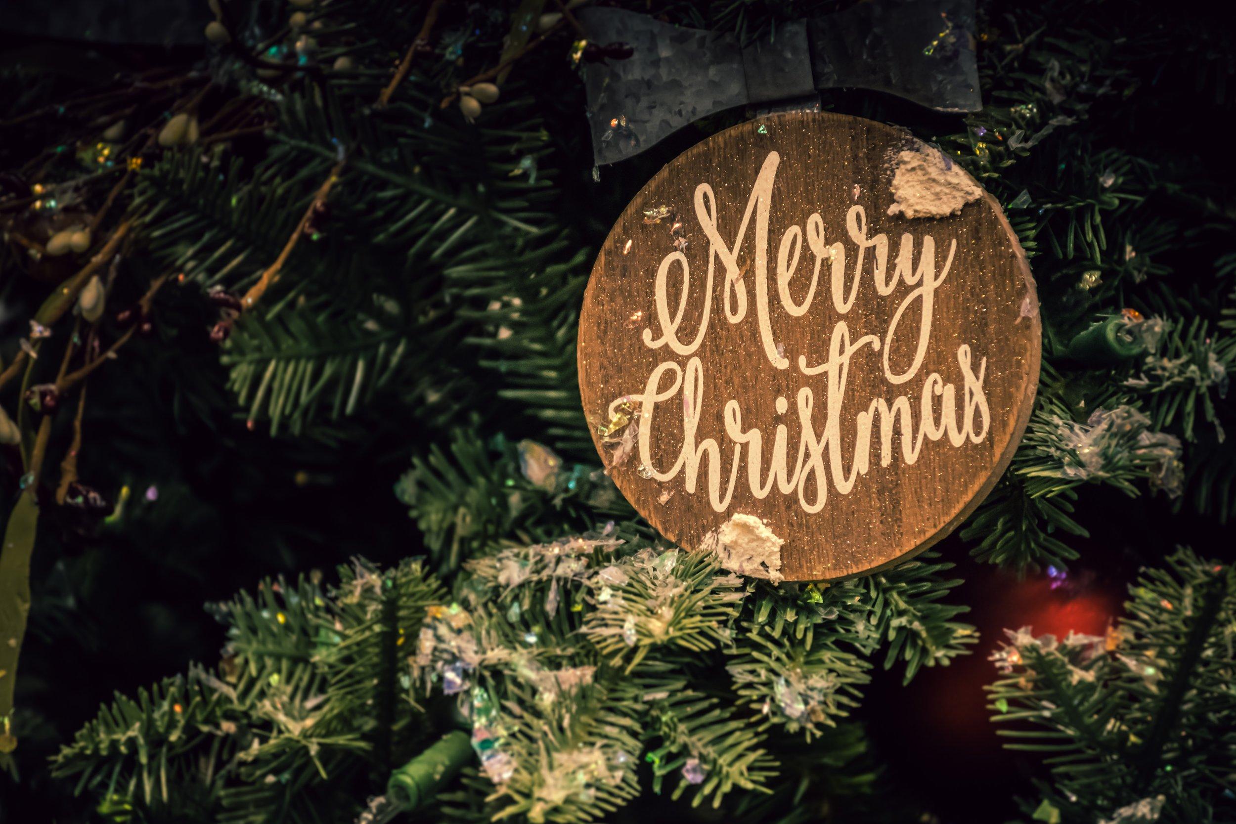 branch-celebration-christmas-1656564.jpg