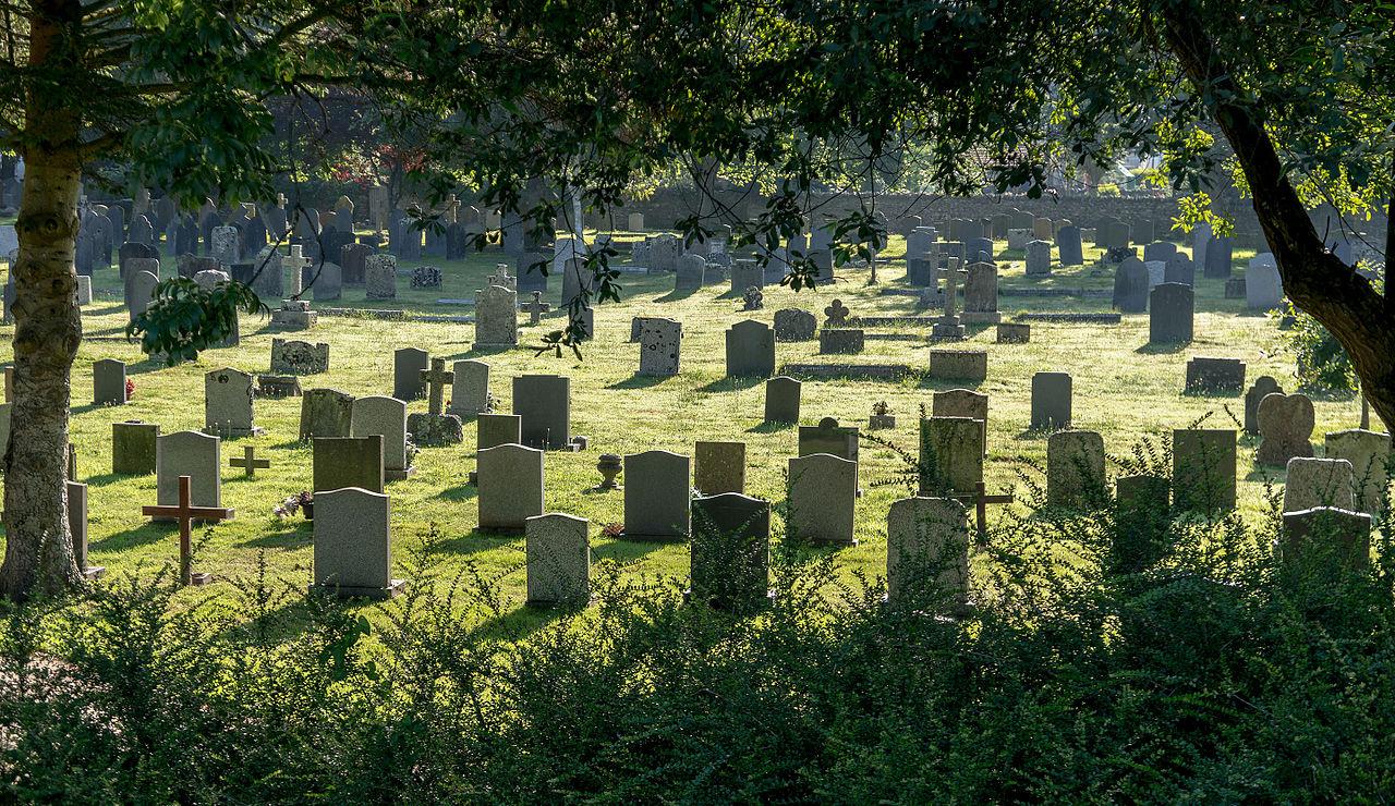 Braunton_(Devon,_UK),_St_Brannock's_Church_--_2013_--_00233.jpg