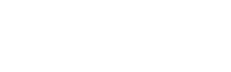 Raven logo vector white[2].png