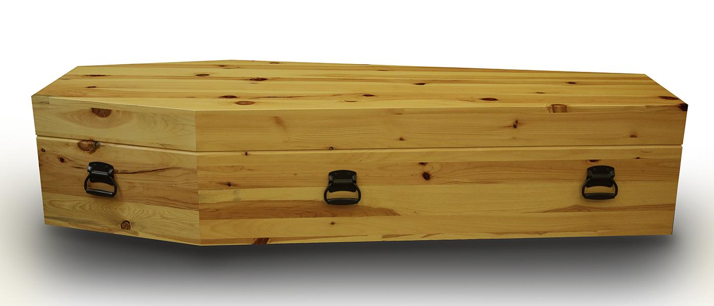 Coffin 1.1.jpg