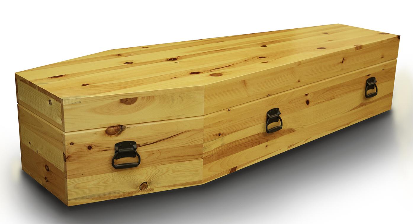 Coffin 1.2.jpg