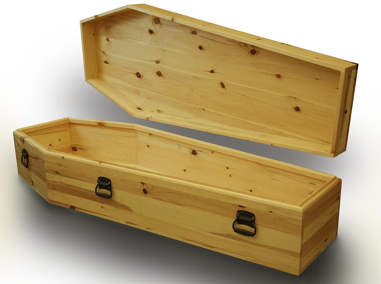 Coffin 1.6.jpg