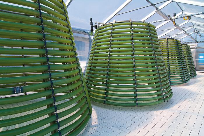 Algae Reactors in optimal photosynthesis conditions