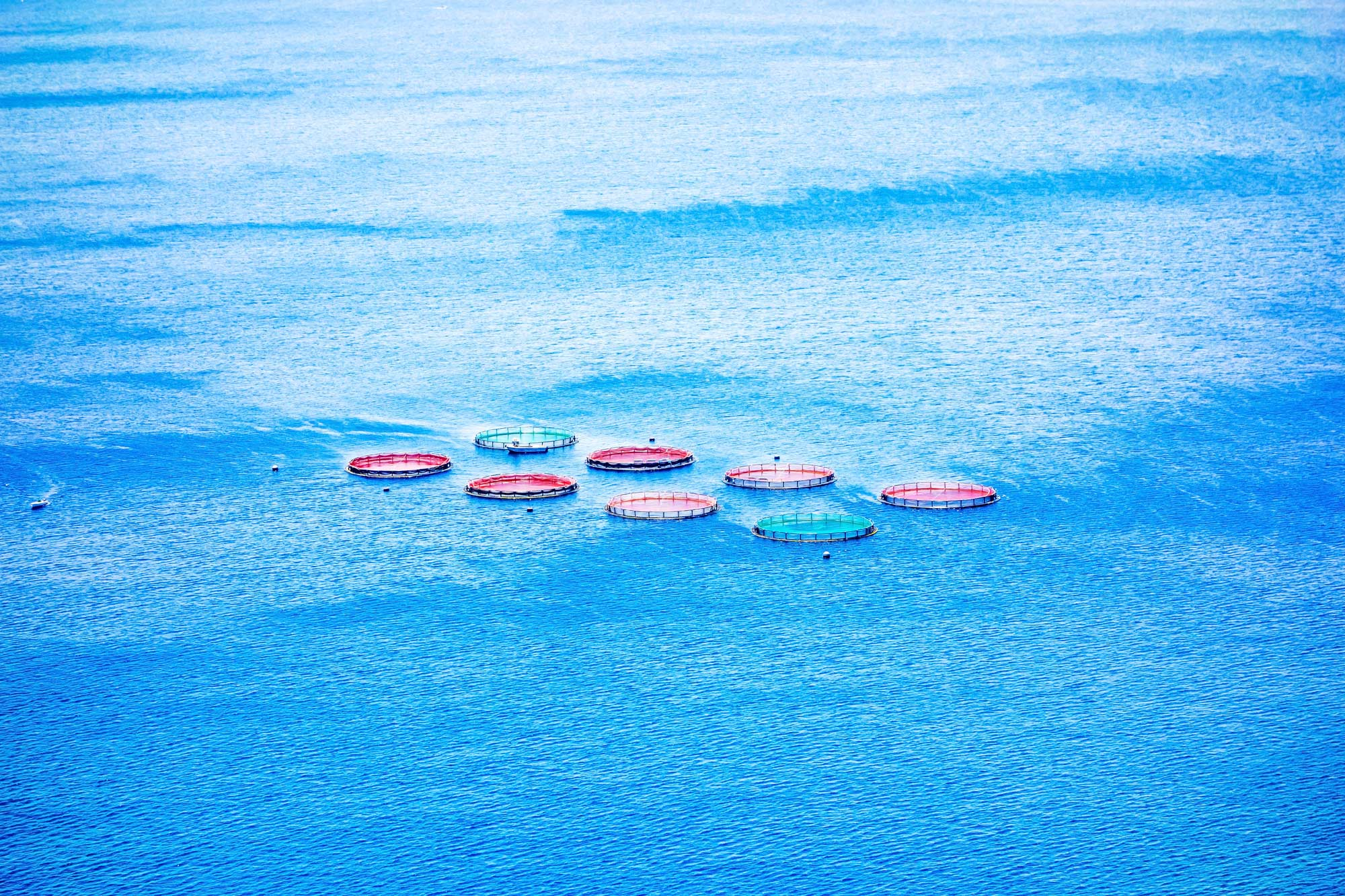 HDPE cages in open water