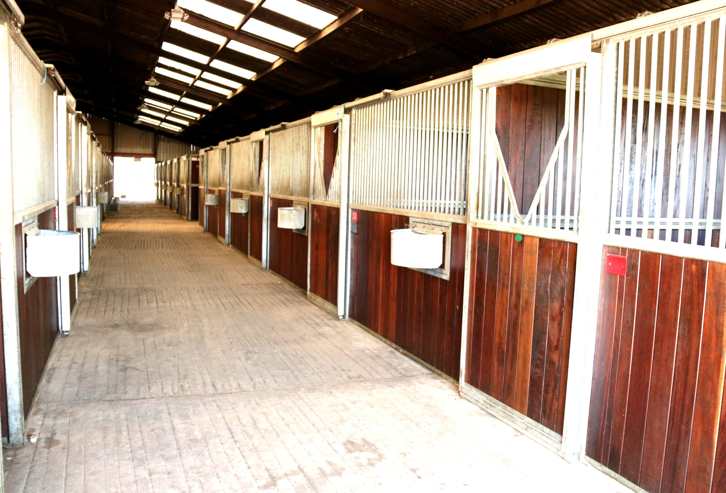 • Monarch Stables 12 x 12 with rubber matting, automatic water and swinging mangers
