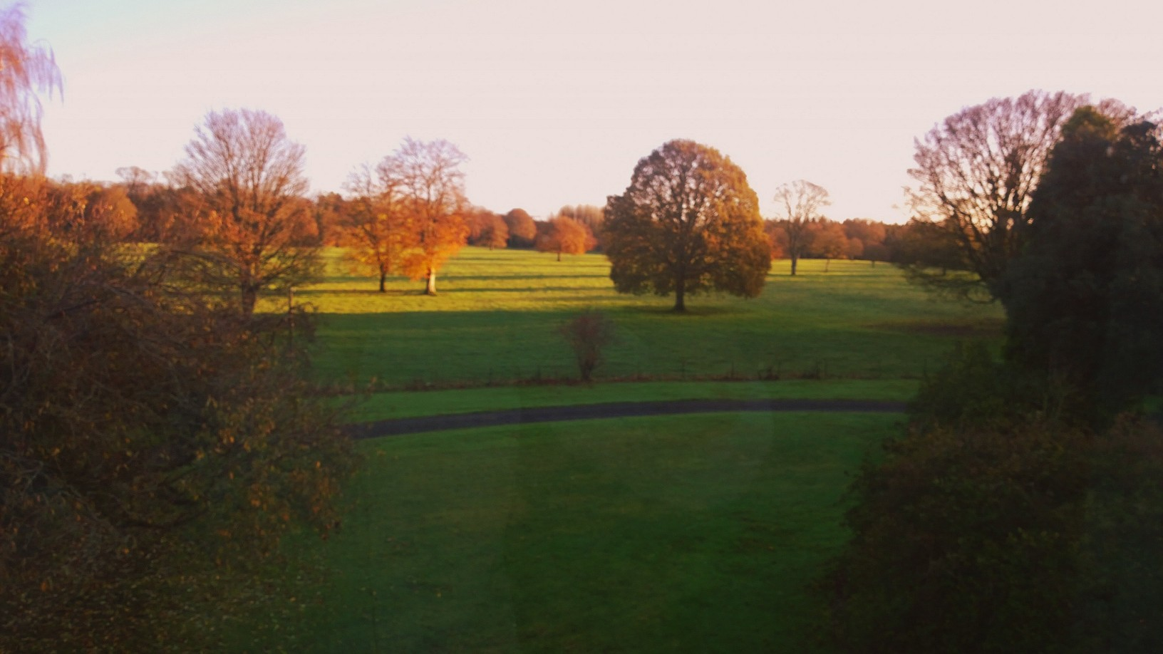 A view from my bedroom window but sadly there are no horses at home since I have left.