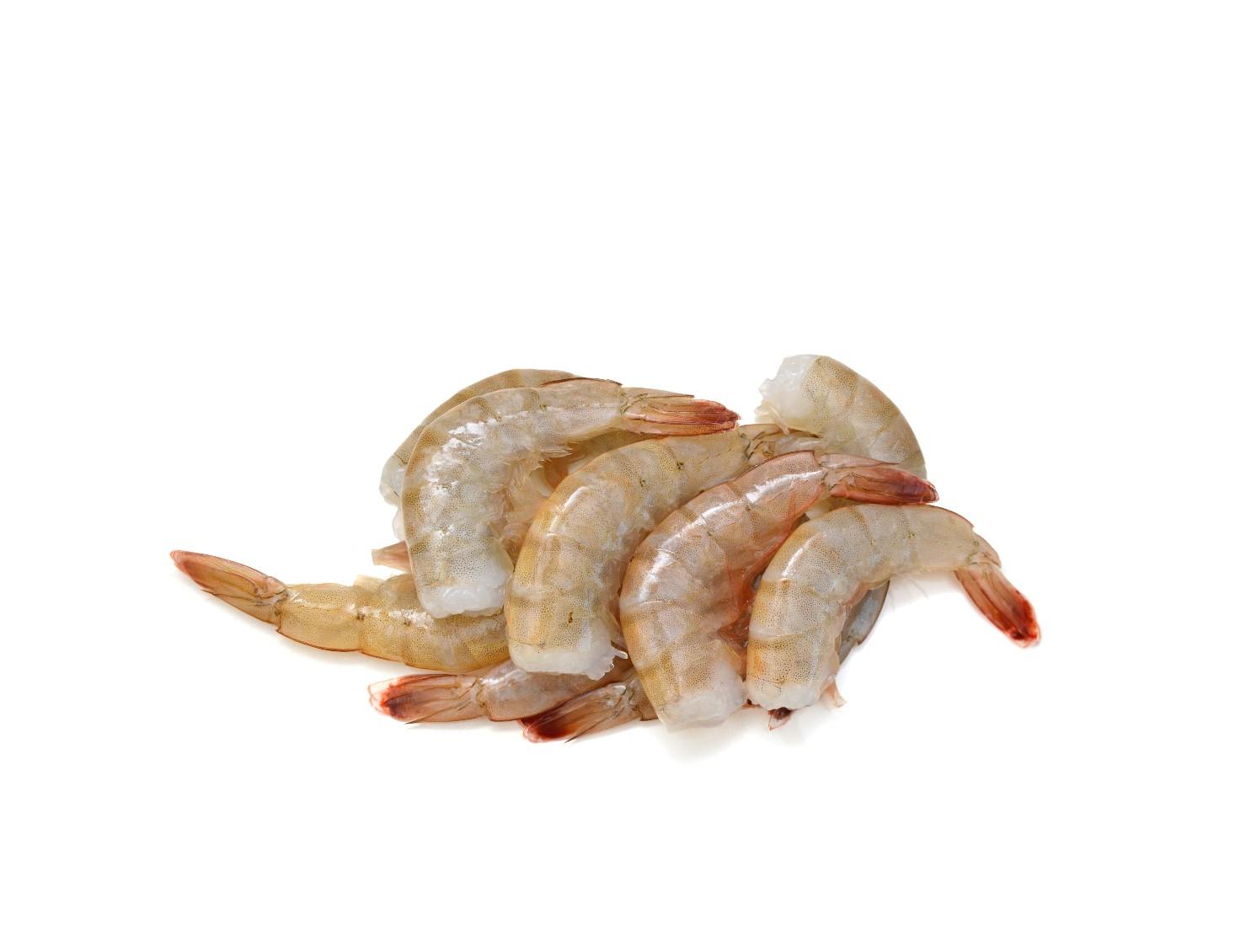 Shrimp Recipes -