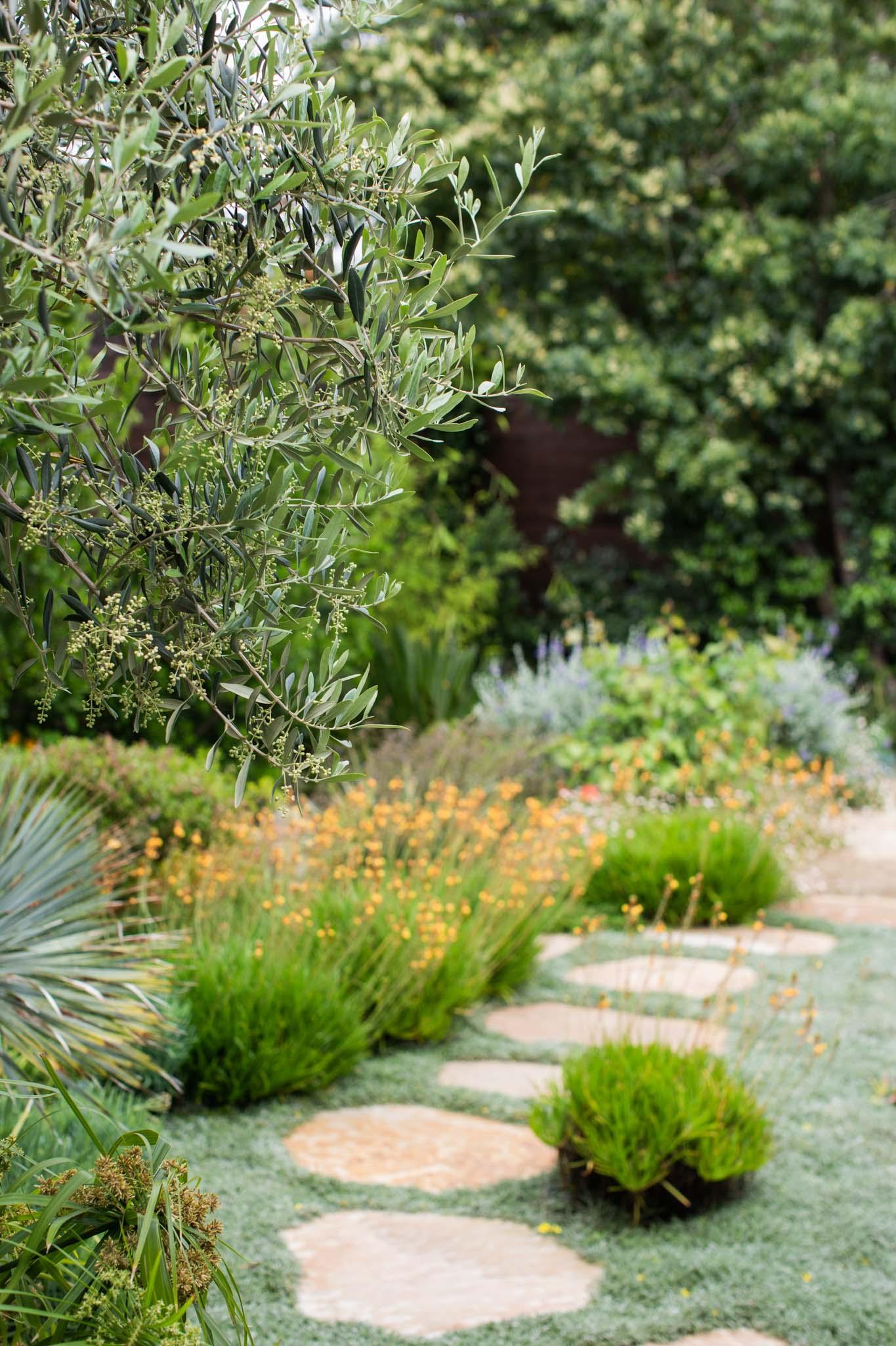Jodi G Designs | Santa Barbara Interior Design Lanscape -47.jpg
