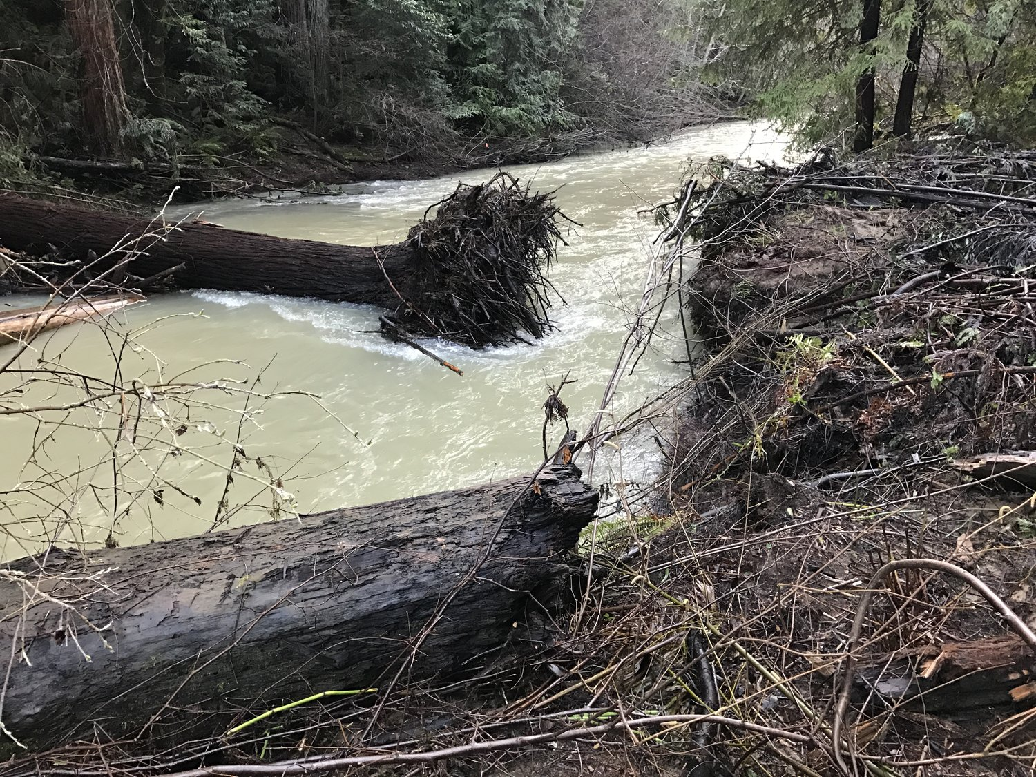 Improved salmon and steelhead habitat by adding large wood structure to streams.Eleven projects; 14.9 mile of stream habitat improved; 918 pieces of wood installed instream.Watersheds: Ten Mile River, Noyo River, Navarro River, Big River, Garcia River, Eel River, Albion River -