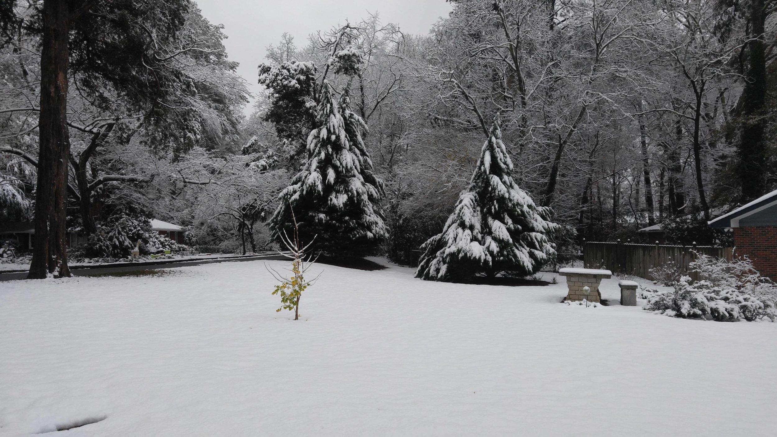 Winter Putting Photo.jpg