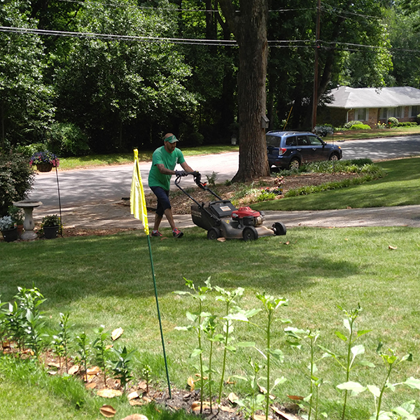 Carley Lawn & Landscapings
