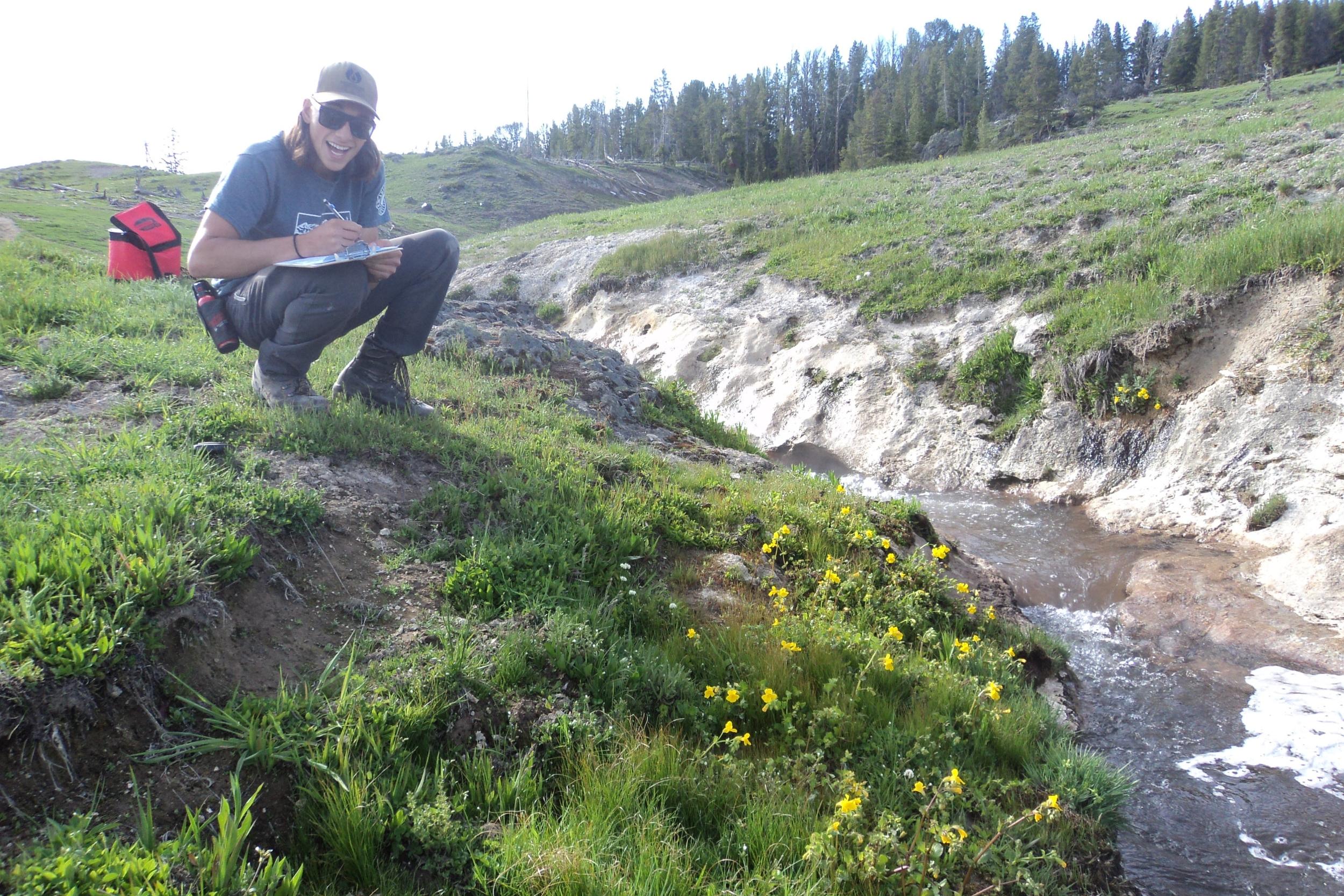 fieldwork in Yellowstone(photo: Kory KOlis)