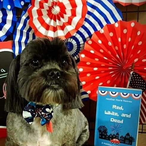 Happy Book Lover's Day! Mr. Bear wants to make sure you get the ebook of Red, White, and Dead while it's still .99¢🐾 Follow the link on my profile to your favorite online retailer. . . . . . #nationalbookloversday #bookloversday #cozymystery #cozymysterywriter #cozymysteries #mysterybooks #mysterywriter #christianfiction #christianwriter #writerslife #writersofinstagram #writerscommunity #authorsofinstagram #author