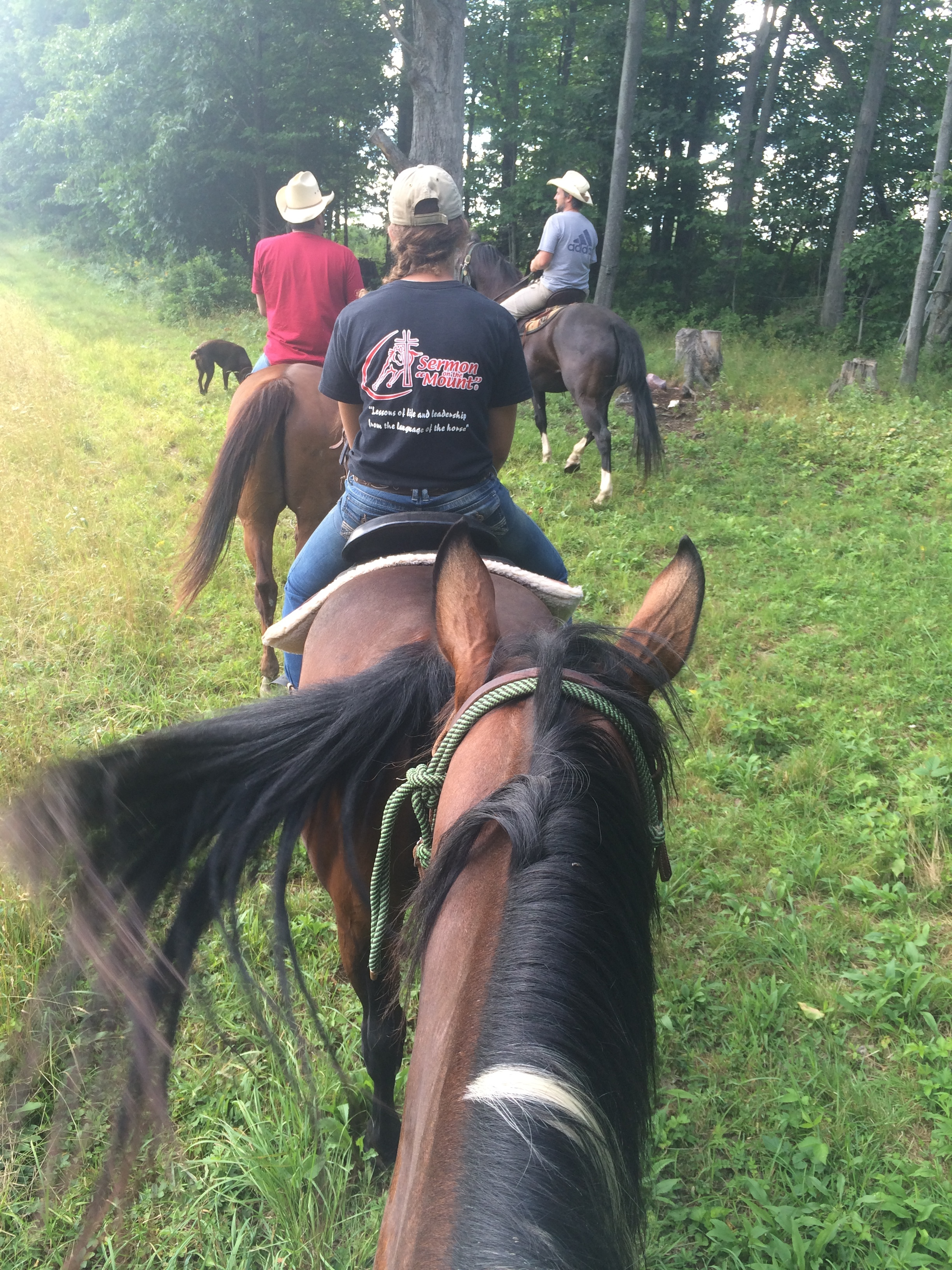 This was from my (Jennifer) trail ride that I talked about!