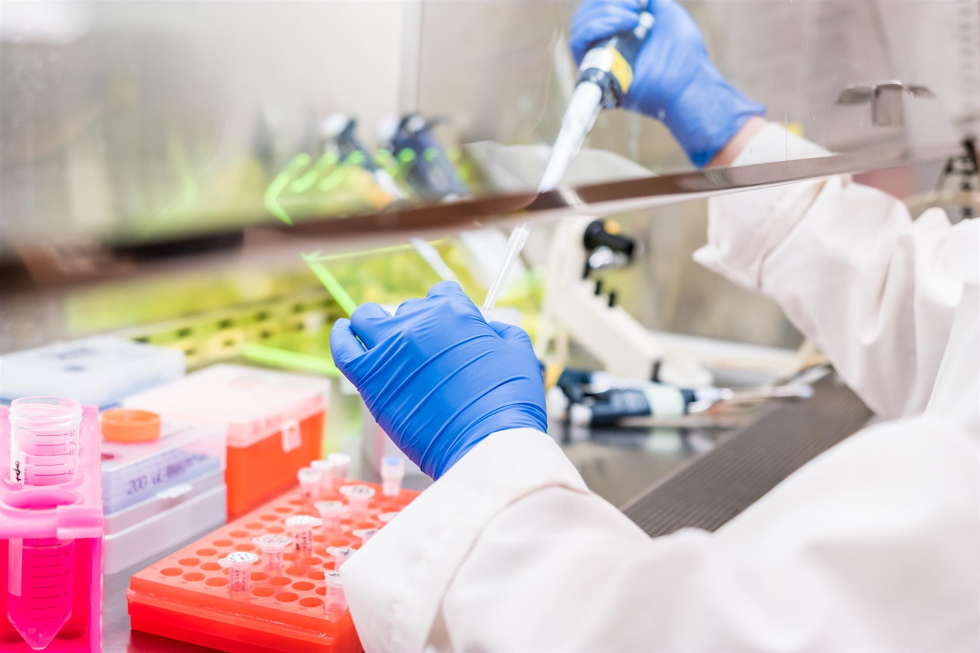 Laboratory Chemical Fume Hood Safety