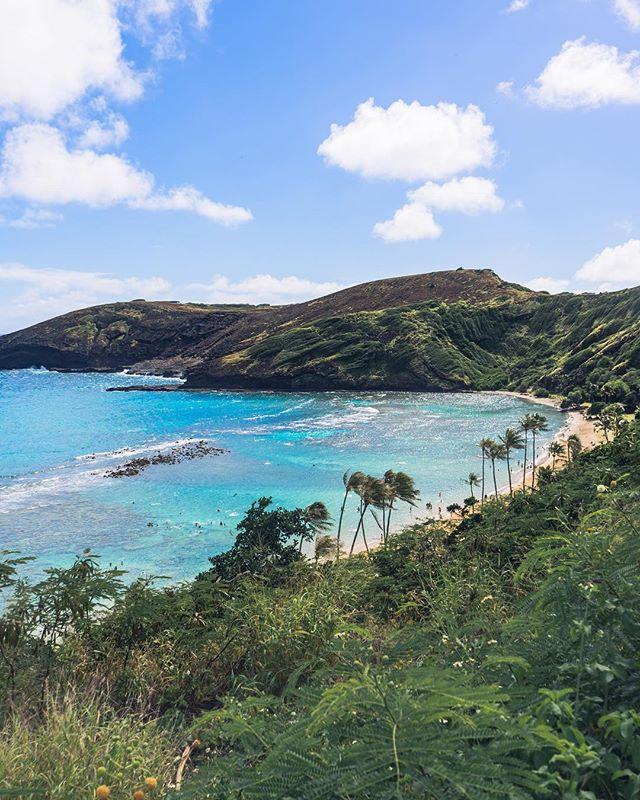 Check out one of Oahu's famous spots! Have you been here? 😎 • • • • • #RDxHI #nakedhawaii #hawaiistagtam #hawaiiunchained #HInews #luckywelivehonolulu #honolulu #hawaii #globeshotz #earth_shotz #earthporn #global_creatives #nakedplanet #bestvacations #earthpix #IGTones #HeaterCentral #HouseofTones #beautifuldestinations #Bay_Shooters #EnvisionTones #GramSlayers #ShotzDelight #DreamWorldImages #Way2ill #WildGrammers #WorldTones #theIMAGED #CreativeGrams #BayAreaPhotographer @honolulu_life