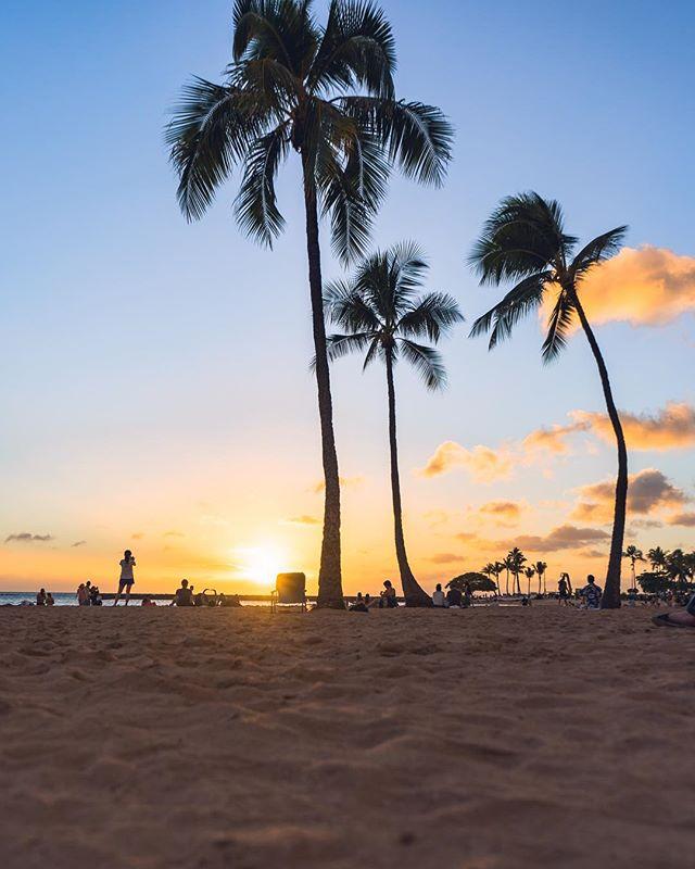 Am I the only one who loves palm trees and sunsets? Because they are the perfect combination! 🌴🌅 😎 • • • • •  #RDxHI #NakedHawaii #LifeOfAdventure #HawaiiUnchained #LiveOutdoors #Hawaii #Honolulu #globeshotz #EarthPorn #global_creatives #WaikikiBeach #Oahu #BeachesandResorts #BestVacations #EarthPix #IGTones #HeaterCentral #HouseofTones #BeautifulDestinations #Bay_Shooters #CaliGrammers #EnvisionTones #GramSlayers #ShotzDelight #DreamWorldImages #Way2ill #WildGrammers #WorldTones #theIMAGED #Tlpicks