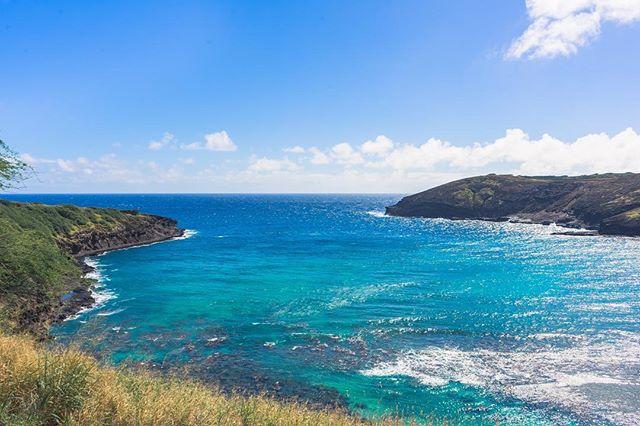 Come on in, the waters fine. 😉🌴🌊 @hanaumabaysnorkel • • • • •  #RDxHI #NakedHawaii #LifeOfAdventure #HawaiiUnchained #LiveOutdoors #Hawaii #Honolulu #globeshotz #EarthPorn #global_creatives #WaikikiBeach #Oahu #BeachesandResorts #BestVacations #EarthPix #IGTones #HeaterCentral #HouseofTones #BeautifulDestinations #Bay_Shooters #CaliGrammers #EnvisionTones #GramSlayers #ShotzDelight #DreamWorldImages #Way2ill #WildGrammers #WorldTones #theIMAGED #Tlpicks