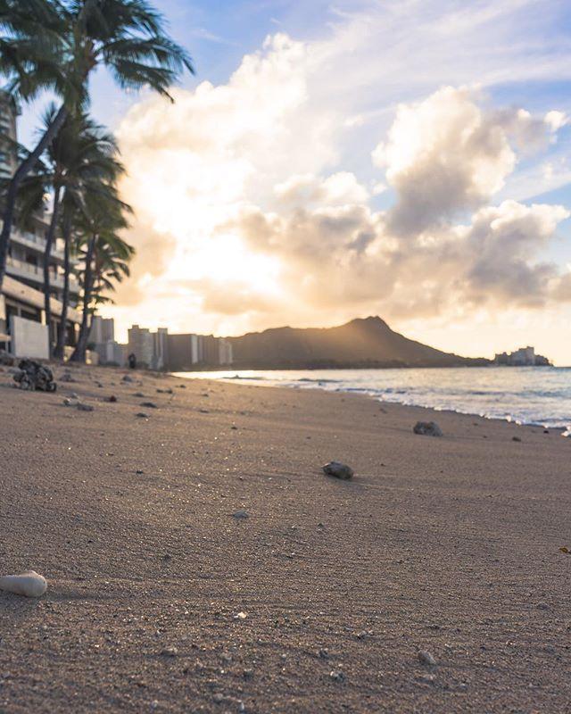Always thankful for another day because who knows when it's going to be the last. 🙏🌴☀️ • • • • •  #RDxHI #NakedHawaii #LifeOfAdventure #HawaiiUnchained #LiveOutdoors #Hawaii #Honolulu #globeshotz #EarthPorn #global_creatives #WaikikiBeach #Oahu #BeachesandResorts #BestVacations #EarthPix #IGTones #HeaterCentral #HouseofTones #BeautifulDestinations #Bay_Shooters #CaliGrammers #EnvisionTones #GramSlayers #ShotzDelight #DreamWorldImages #Way2ill #WildGrammers #WorldTones #theIMAGED #Tlpicks