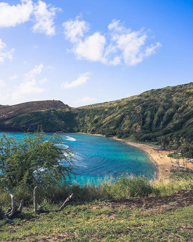 Have you ever been Snorkeling? There's so much to be found!🐠🐟🐡🐬🐳🐙🦑🦐🦞🦀🐋🦈 • • • • • @hanaumabaysnorkel  #RDxHI #NakedHawaii #LifeOfAdventure #HawaiiUnchained #LiveOutdoors #Hawaii #Honolulu #globeshotz #EarthPorn #global_creatives  #HanaumaBay #Oahu #BeachesandResorts #BestVacations #Snorkel  #IGTones #HeaterCentral #HouseofTones  #BeautifulDestinations #Bay_Shooters #CaliGrammers #EnvisionTones #GramSlayers #ShotzDelight #DreamWorldImages #Way2ill #WildGrammers #WorldTones #theIMAGED #WildernessCulture