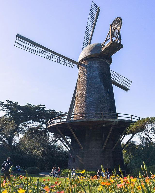 Finally went out to see the windmill! It's definitely a hidden gym in SF! Have you ever been? It's a pretty chill place. • • • • • #Bay_Shooters #WildBayArea #WildGrammers #AlwaysSF #WorldTones #Way2ill #IGSanFrancsico #UnlimitedSanFrancisco #RawCalifornia #GoldenGatePark #TheSanFrancisco #theIMAGED #Californiaholics #SanFranciscoWorld #IGTones #WonderlustSanFrancisco #CaliforniaCaptures #CaliGrammers #HeaterCentral #StreetsOfSF #GoldenGateBridge #SFGate #SfPulse #EnvisionTones #GramSlayers #ShotzDelight #IGersSF #IGSanFrancisco #RDxSF #CreativeGrams