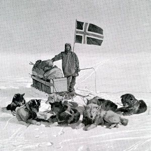 Amundsen with his supplies and chosen transport method of dogs near the south pole.  Image from:  https://www.popularmechanics.com/adventure/outdoors/a7376/why-the-british-were-doomed-to-lose-the-race-to-the-south-pole-6617203/