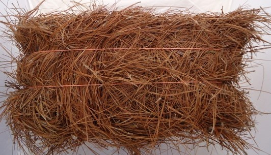 Mid-Atlantic Pine Straw Mulch only sells Grade A Longleaf Pine Straw, as Longleaf is the preferred mulch due to its outstanding characteristics.