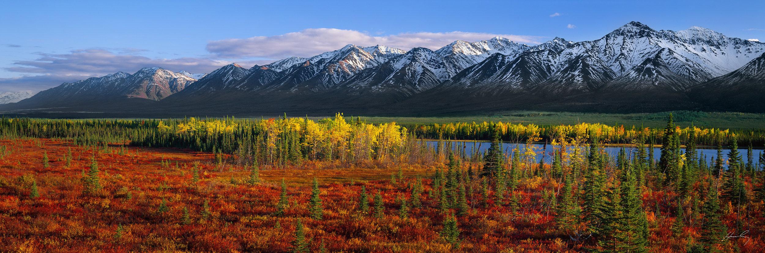 """Fall Paintbrush"" Kluane Mountains, Yukon, Canada"