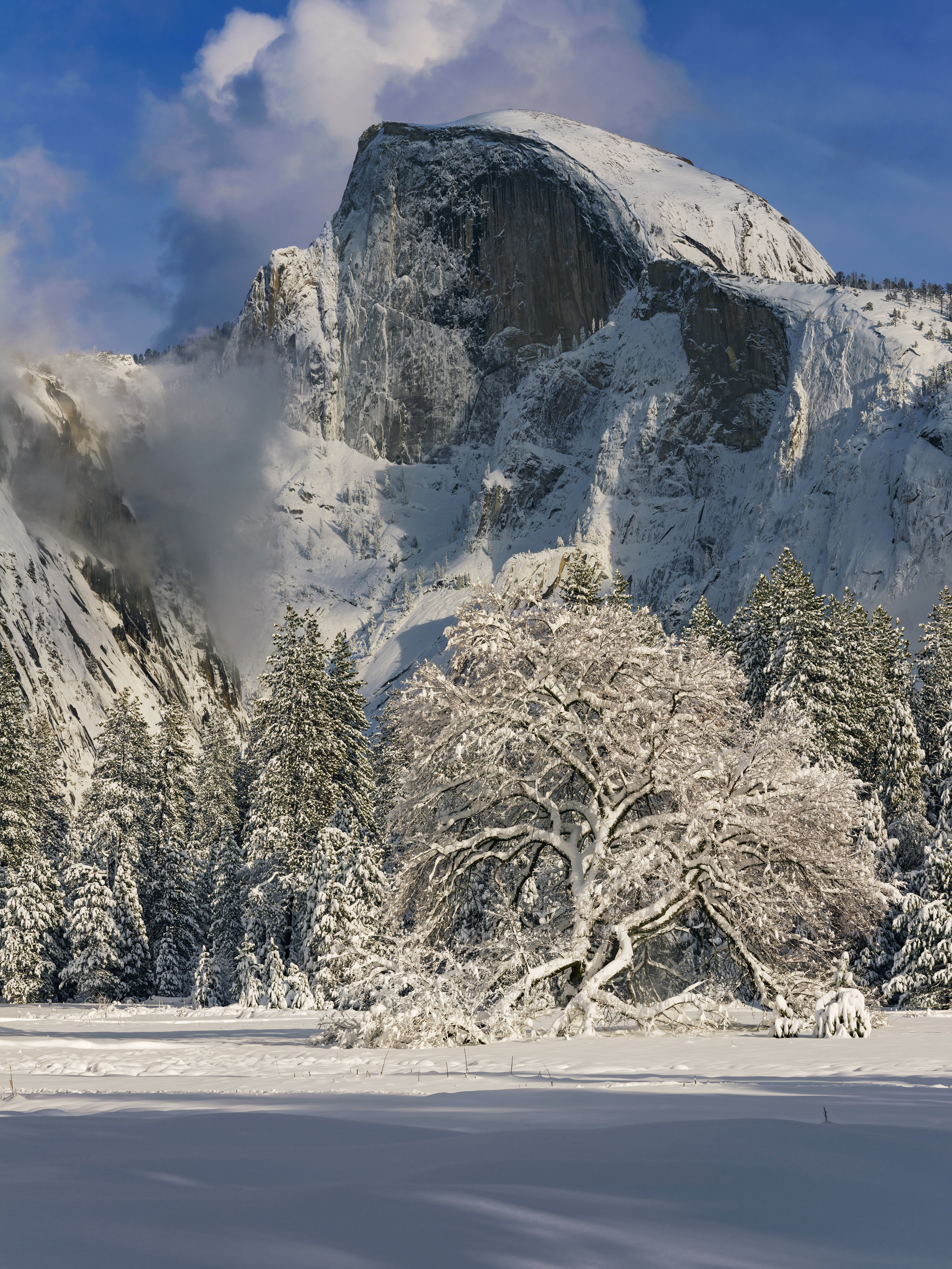 """Half Dome "" Yosemite N. P., California"