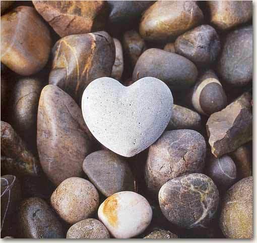 Nature Heart 3.jpg
