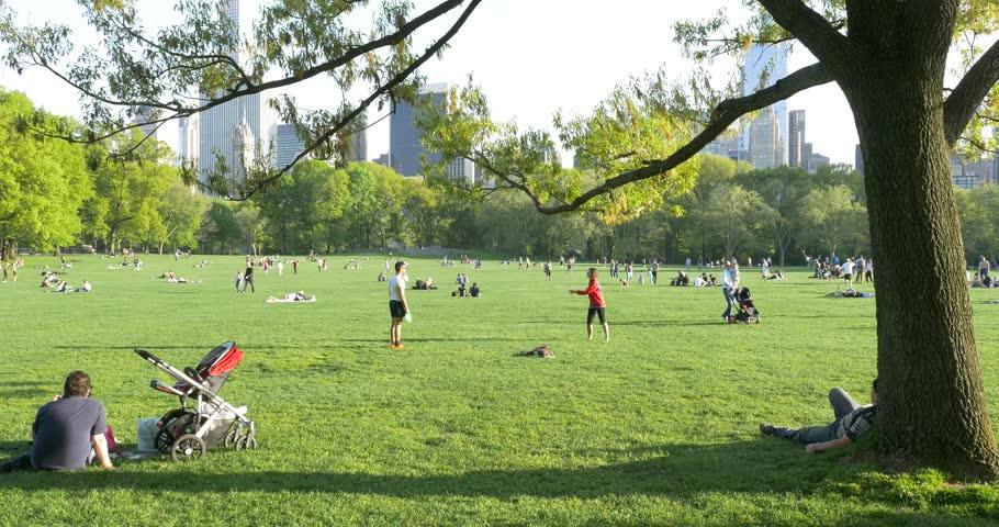 Central Park Outdoors.jpg