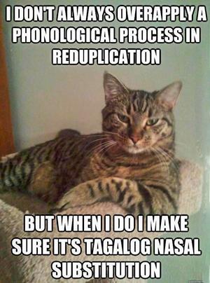 cat-grammar.png
