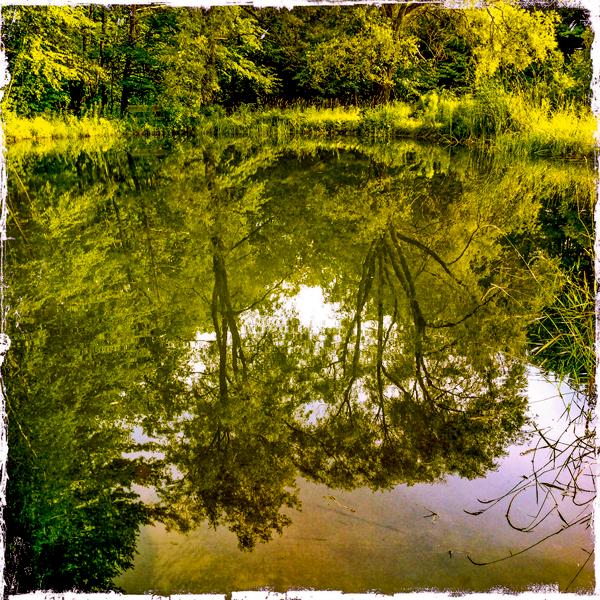 Barnett Hill pond, Alstead NH