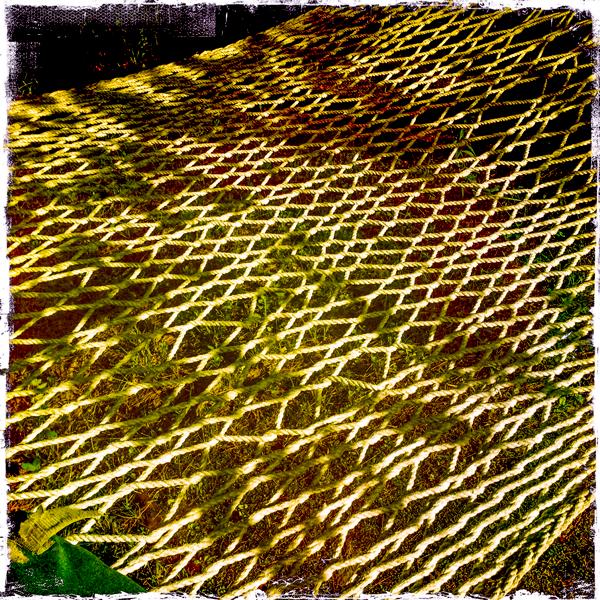 The interdependency of hammock threads. Barnett hill, Alstead NH