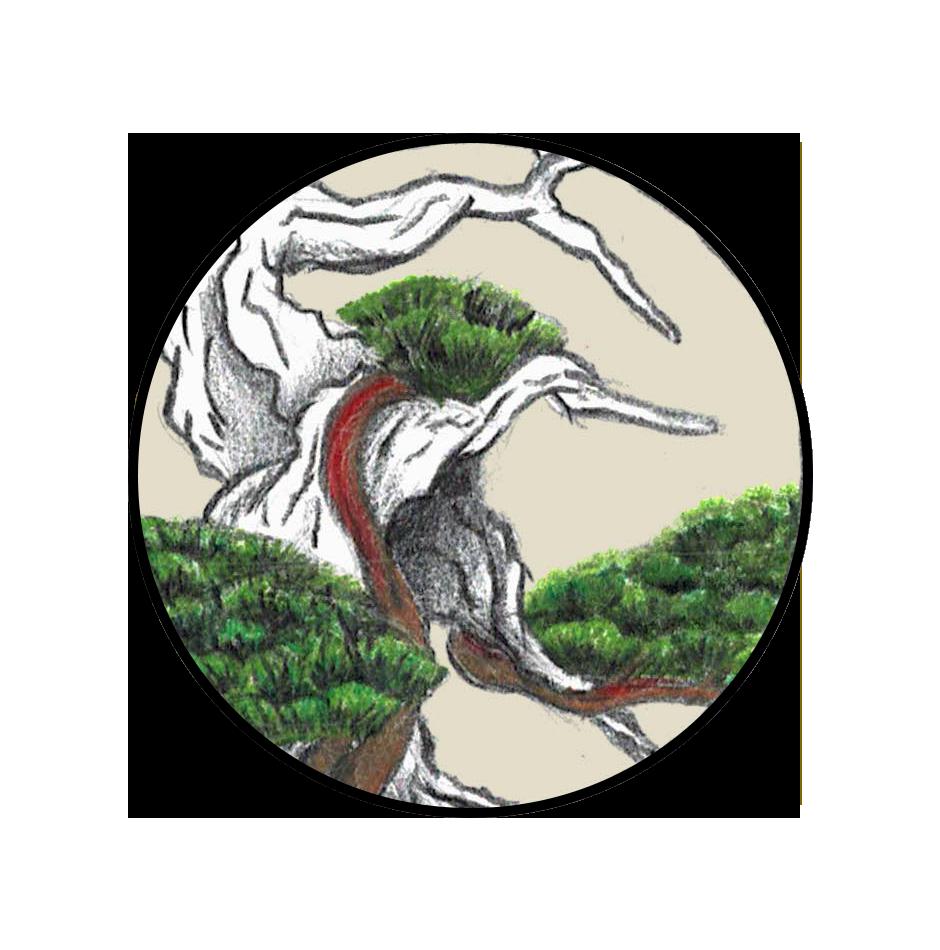SBS_Logo_4.png