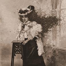 Talia Greene