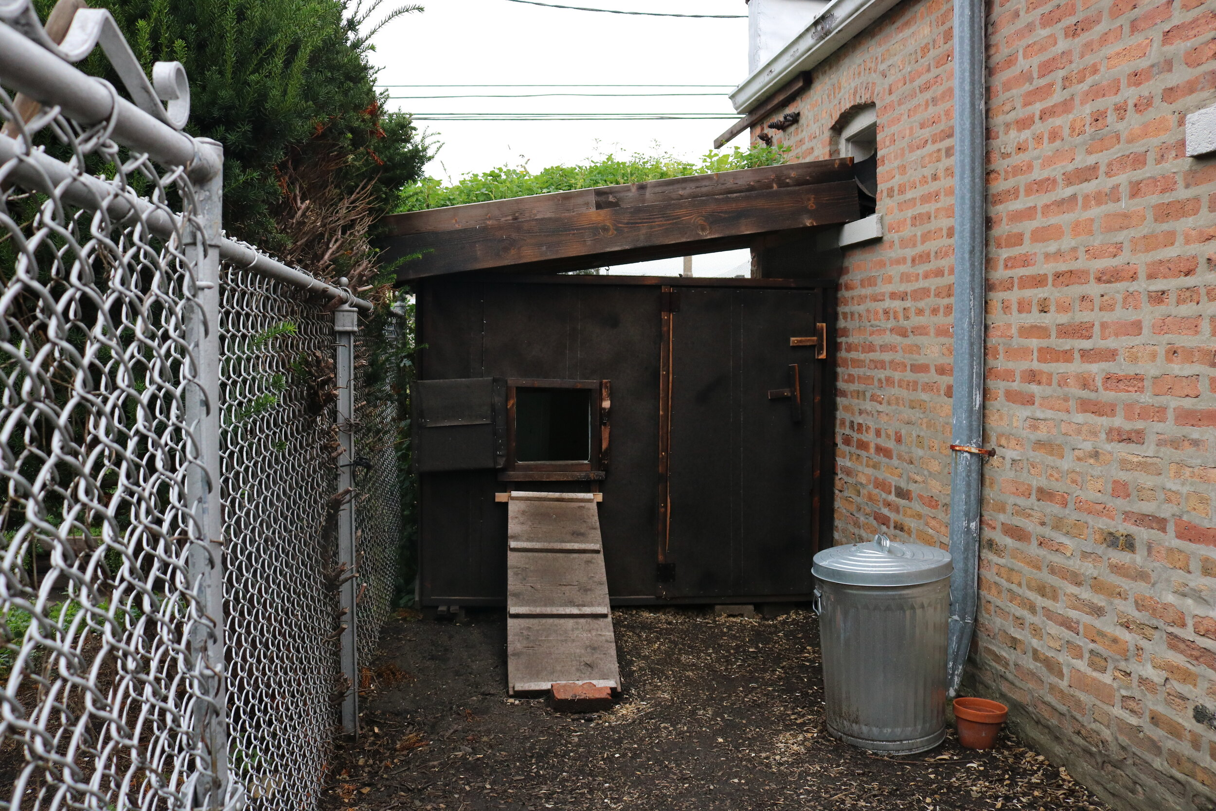 Bronzeville resident James Silvestro's chicken coop, one of only a few South Side coops in the tour.