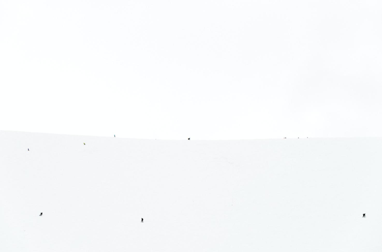SKIERS-4434 - 150x100cm-