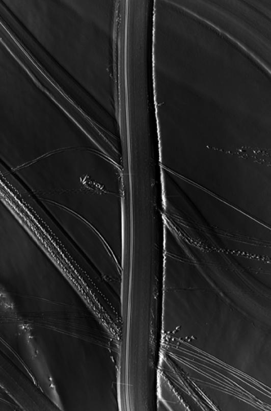 Traces-AVZ-150217-100x150cm
