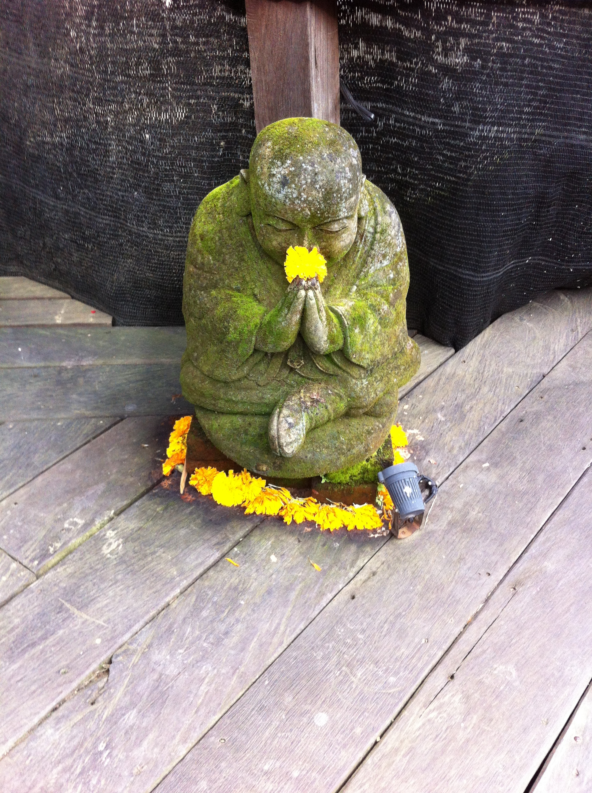 Buddha at Yoga Barn