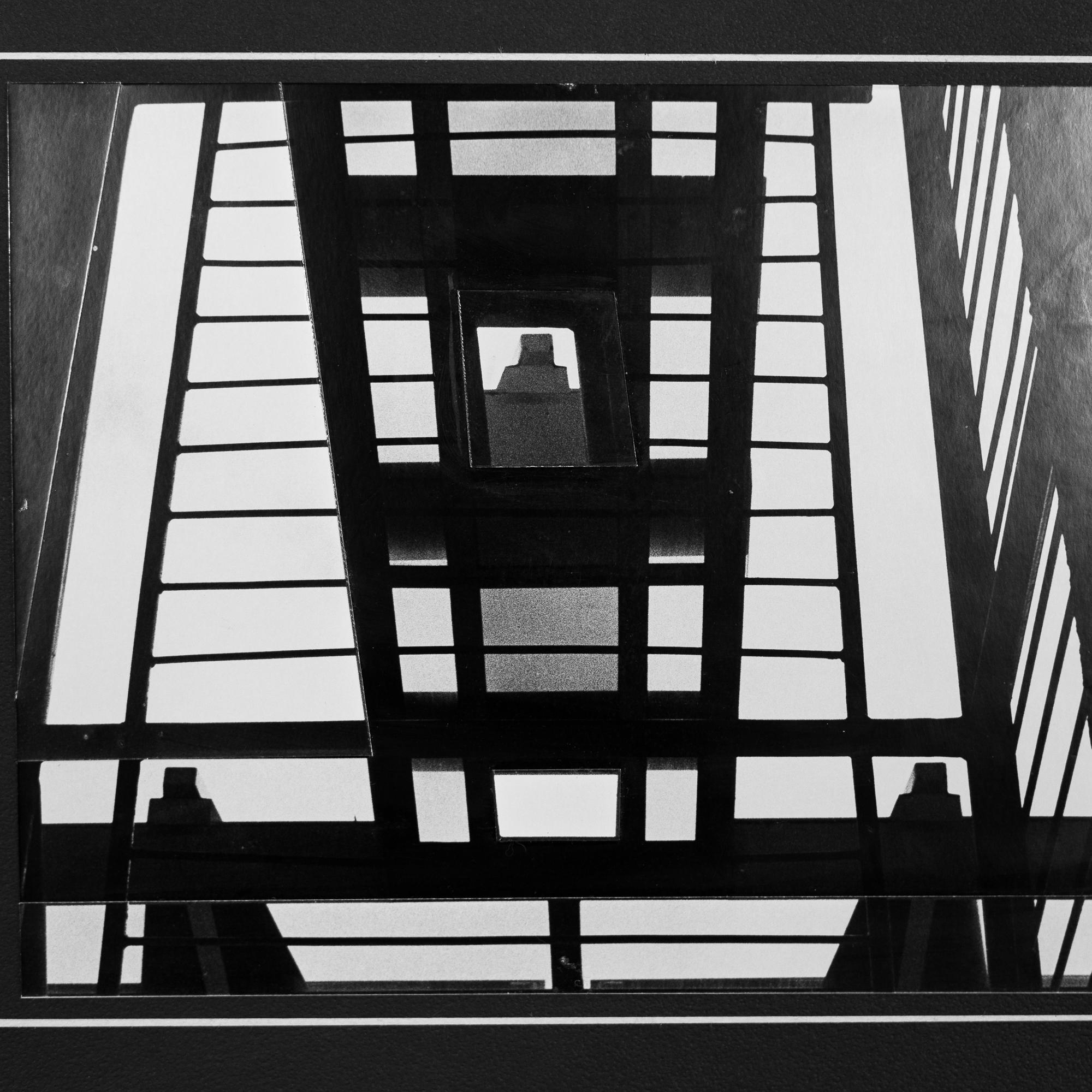 The_Urban_Wild_NZ_The_Upstairs_Gallery_Octoberuntitled shoot-20171015-008-2.jpg